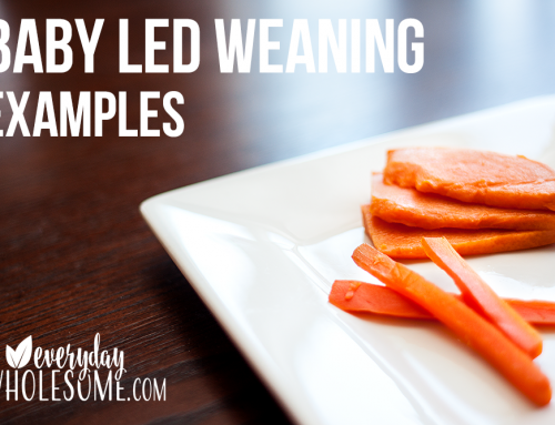 "BABY LED WEANING EXAMPLES | BABY FOOD ""HOW TO"""